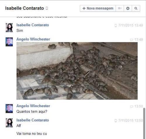 Isabelle Contarato... Quantos ratos tem aqui?